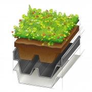 GreenPlus - Aufbau der Dachbegrünung