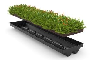 GreenPlus Pflanzenwanne
