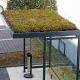 GreenPlus Dachbegrünung