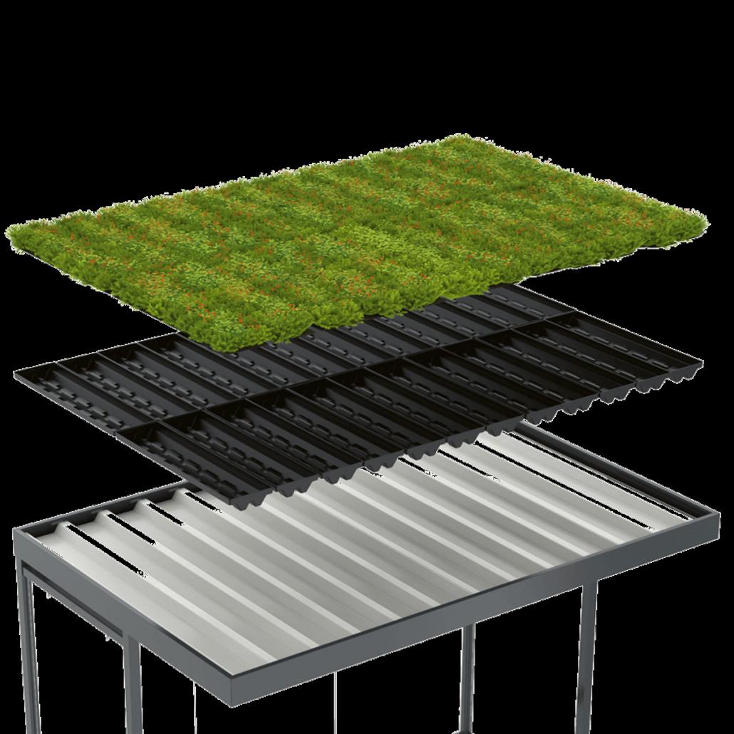 GreenPlus Pflanzenwanne Dachansicht